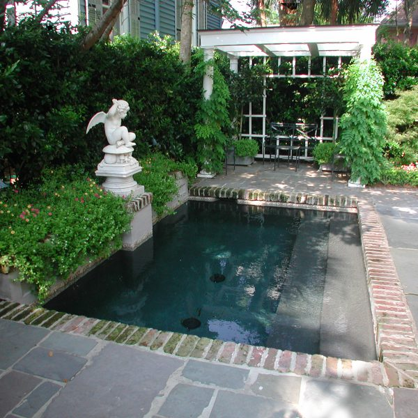 Plunge Pool with steps