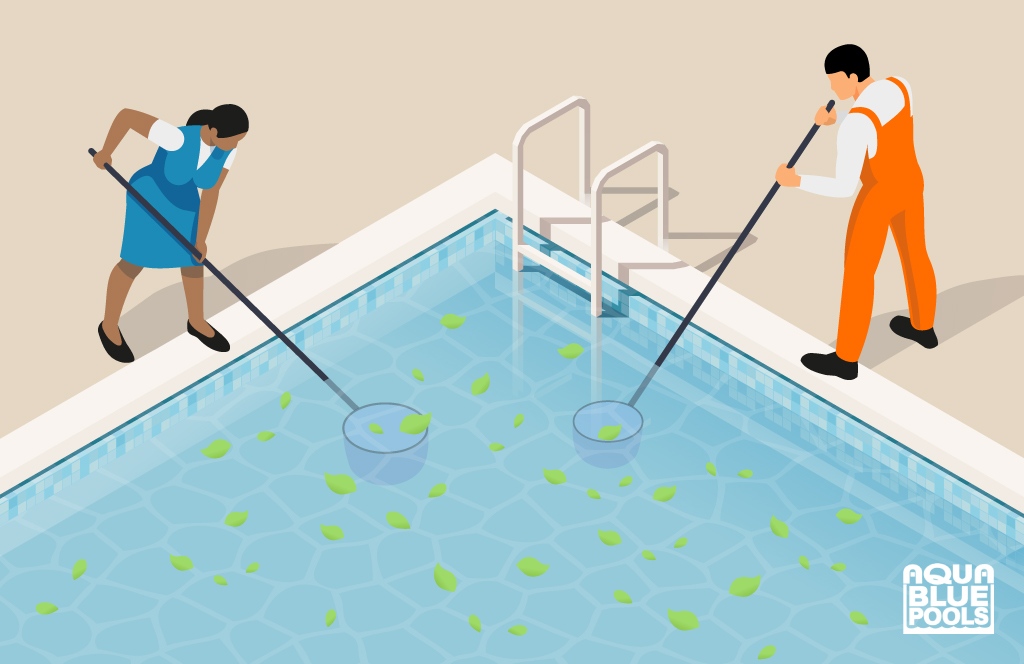 Pool maintenance, keep your pool clean by removing debris